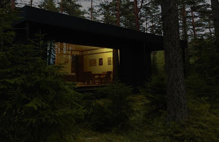 лето.  белая  ночь. вид  на шале N9
